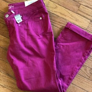 NWT The Loft Modern Straight Cuffed Pants
